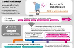 A visual overview of assessment and management for those with low back pain and/or sciatica