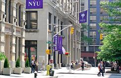 New York University sacks professor for refusing flu shot