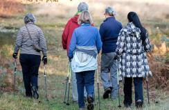 Women going for a brisk walk