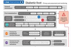 A visual overview of the primary care assessment and monitoring of a diabetic foot