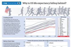 mid life mortality infographic