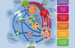 Climate change and infectious disease threats graphic