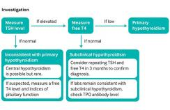 Investigation of suspected hypothyroidism