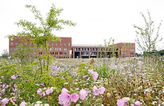 Bernhoven Hospital