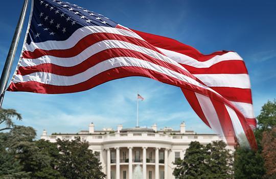 White House + flag