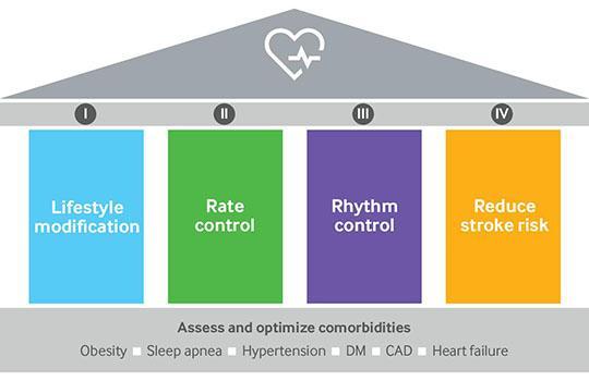 Pillars of atrial fibrillation management as described in American Heart Association scientific statement